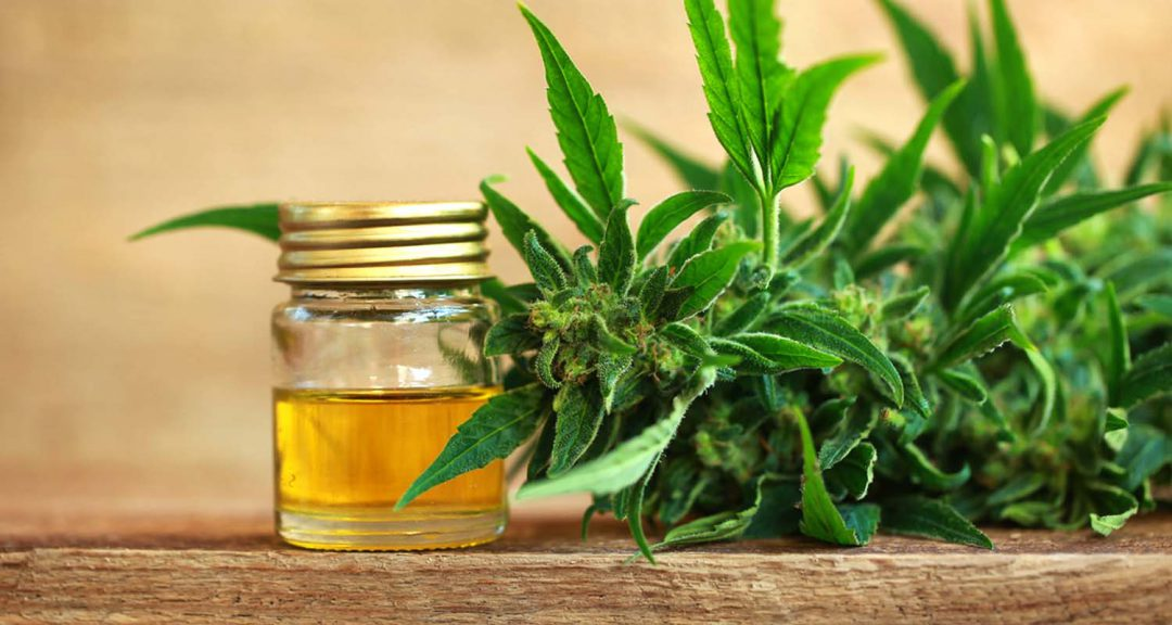 Great Benefits that CBD Oil can Provide